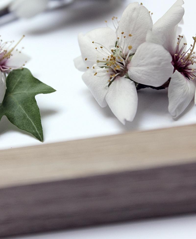 Madera y Flores 11