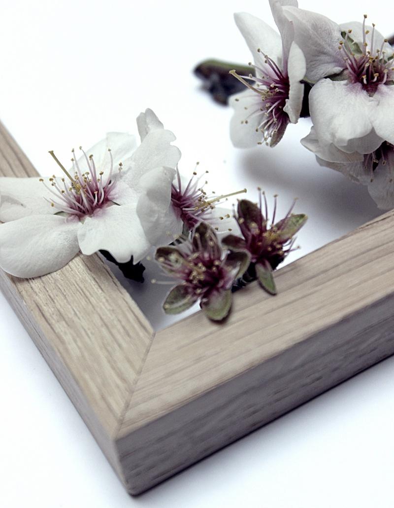 Madera y Flores 14