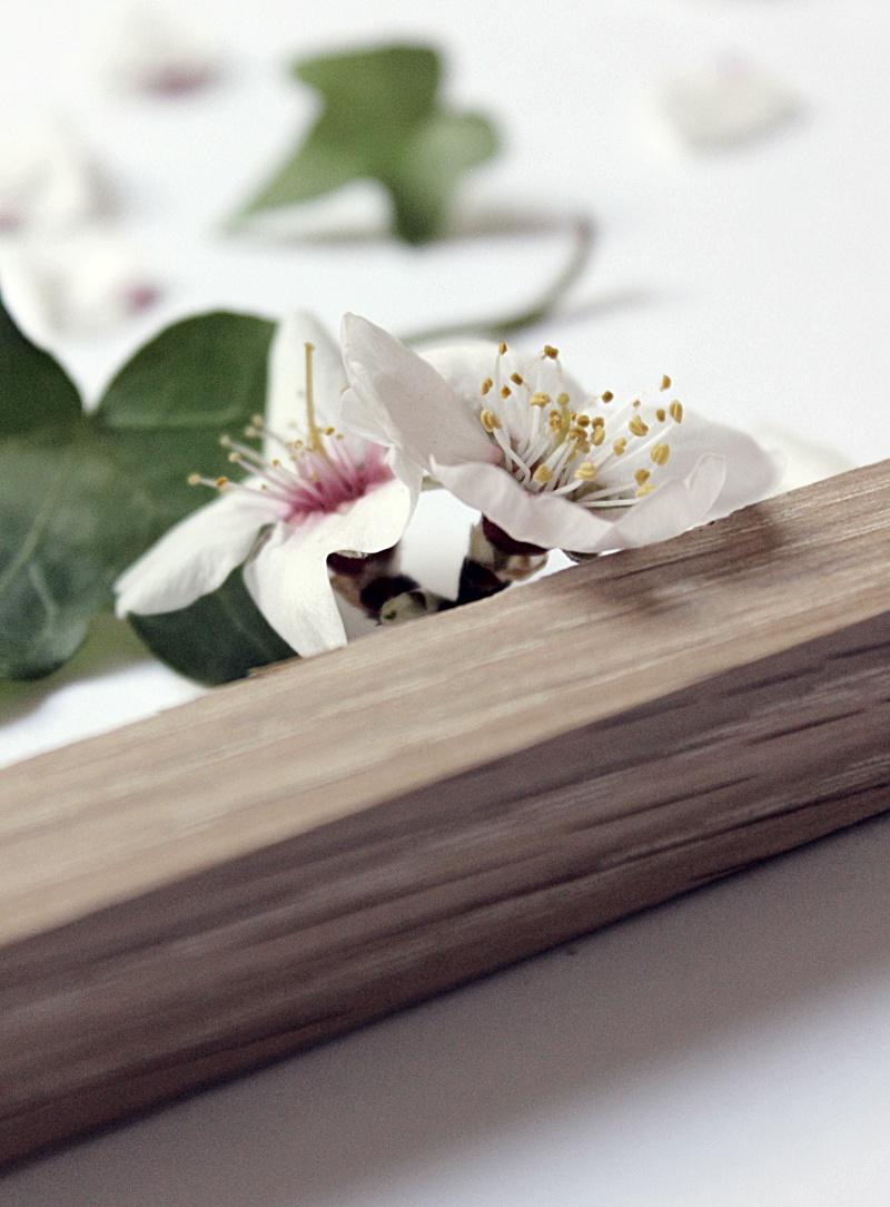 Madera y Flores 6