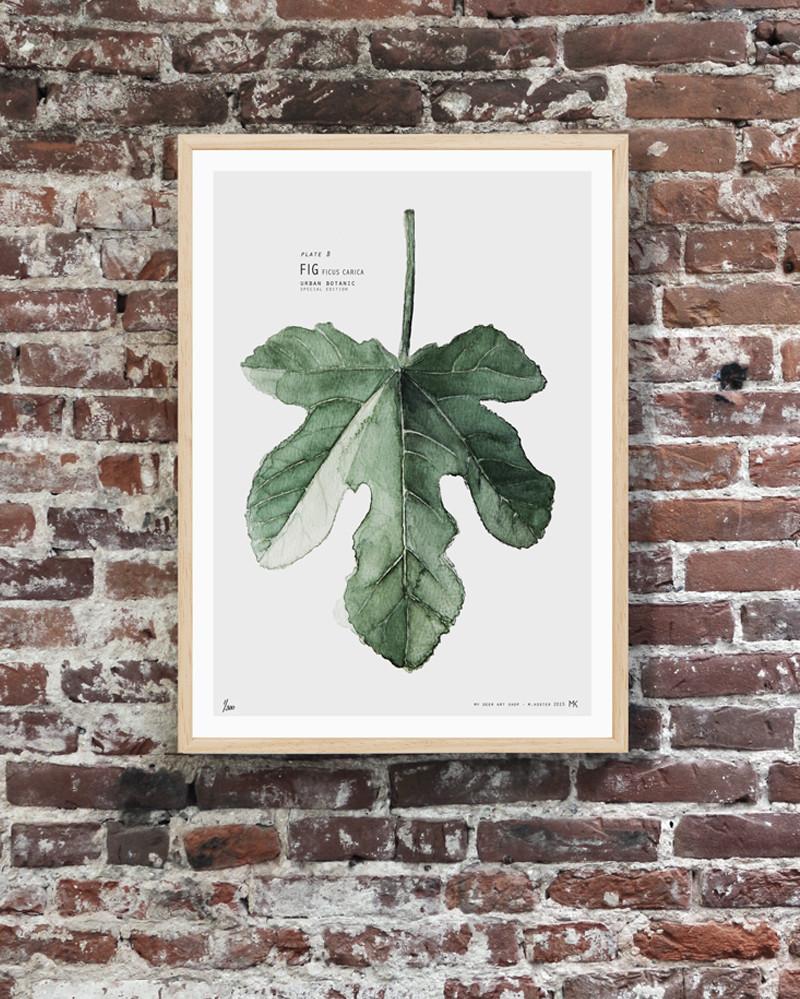 Láminas Botánica