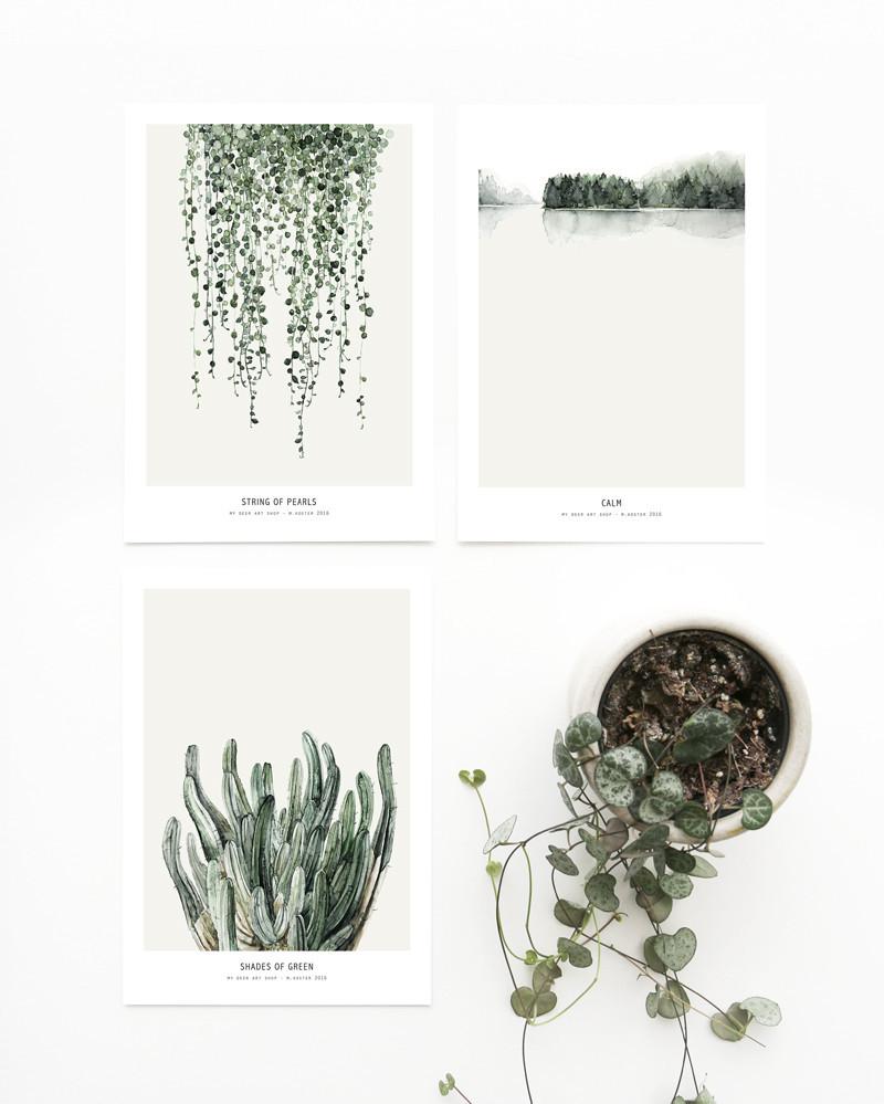 Postales Botanica 2